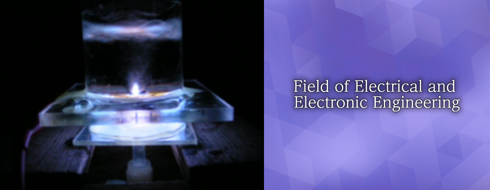 Field of Electrical and Electronic Engineering